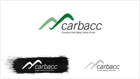Logo design - Carbacc